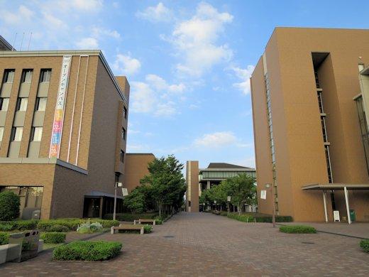 阪南大学流通学部サービスマネジメントコースの情報掲載