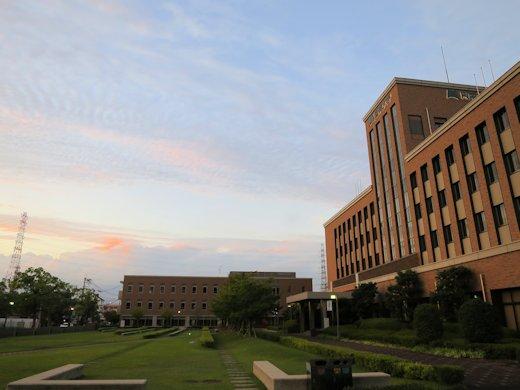 阪南大学における「インターンシップ」の取り組み
